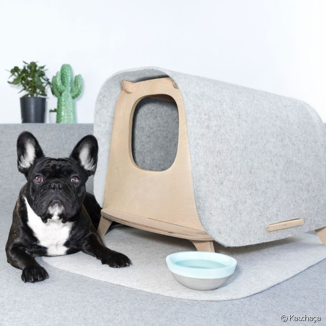 cette start up fran aise cr e du mobilier pour chiens et chats. Black Bedroom Furniture Sets. Home Design Ideas